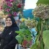 صورة kafah hassan